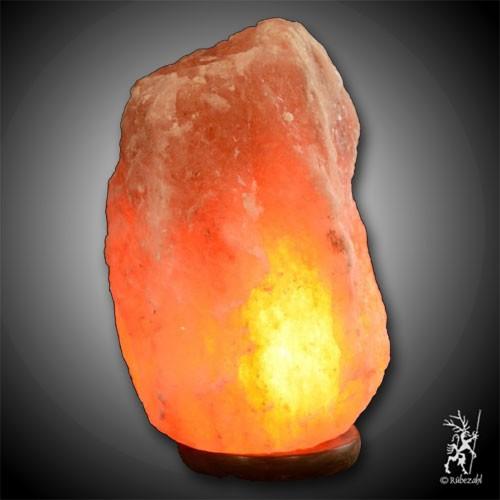 Himalayasalz PUNJAB© Lampe (IV) 9 - 15 kg