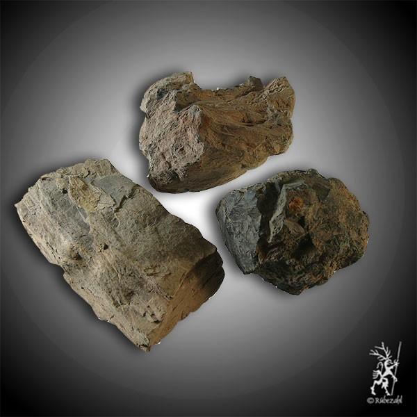 VERSTEINERTES HOLZ geol. XL