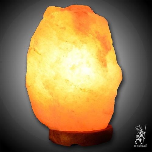 Himalayasalz PUNJAB© Lampe (VII) 51 - 100 kg