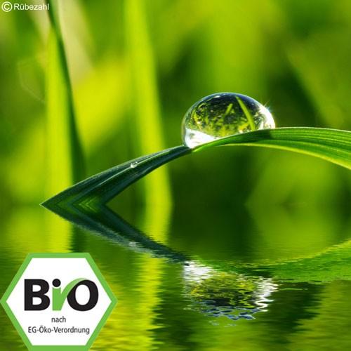 Lemongras BIO Öl (cymbopogon flexuosus) 10 ml